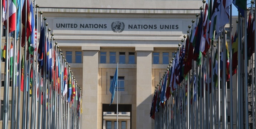 IAUNS Was Granted the Special Consultative Status with ECOSOC