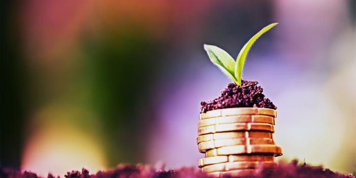 گزارش نشست تخصصی«سرمایه گذاری خارجی مسئولانه برای توسعه پایدار»